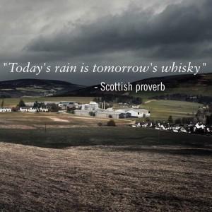 Regn til whisky