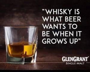 whisky og øl